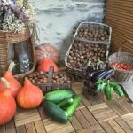 légumes du potager et noix