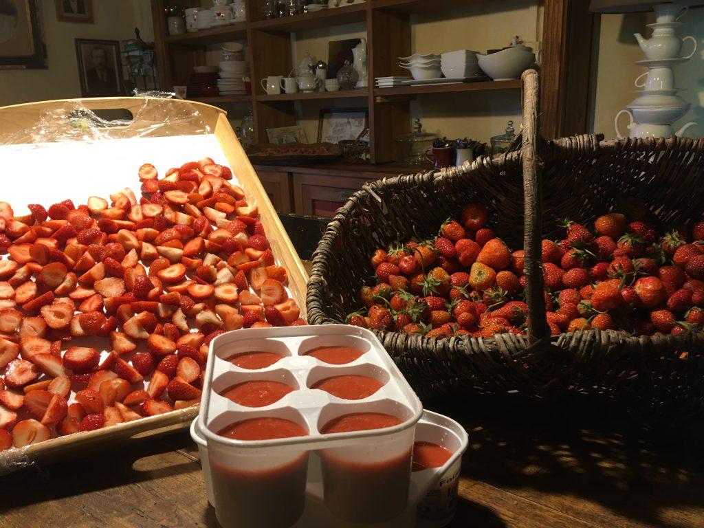 Les Grangettes chambres et table d'hôtes fraises se régaler
